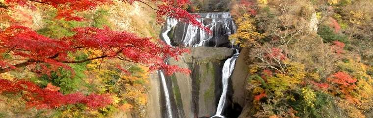 Famous Autumn colour in Ibaraki Prefecture! Day trip to 【Fukuroda Falls】