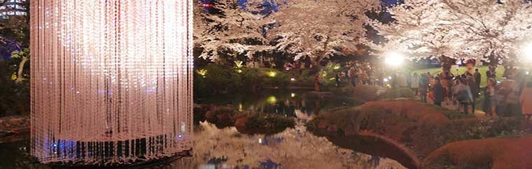 This is Tokyo Roppongi Hills. Mohri Garden is a traditional Japanese landscape garden where has attractive cherry blossoms scenery in Spring next to Roppongi Hills Mori Tower and TV Asahi building.