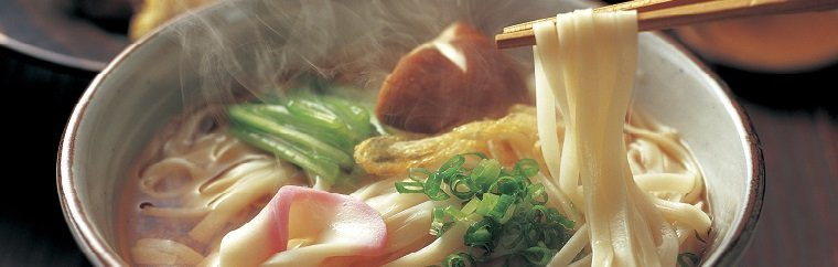What is  Udon?