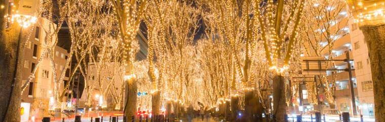 Each year 600,000 lights, called Starlight Leaves, illuminate the trees that line downtown Sendai's Jozenji-Dori.