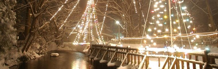 In Akita Prefecture's Yokote City around New Year's, various parts of the city hold events where the trees and plazas are illuminated brightly with many lights! In 2016, the four areas selected for the Collaborative Illuminations of Yokote City are Taiyu, Omori, Omono River, and Hiraka.