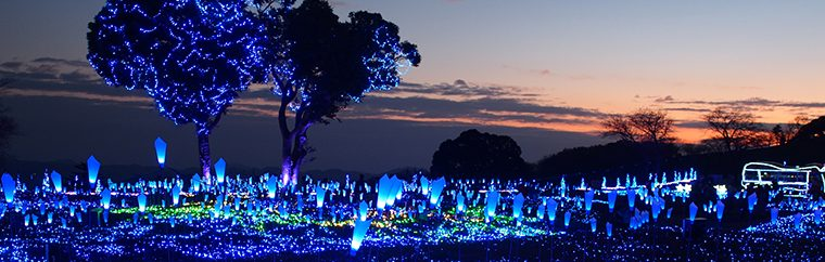 "Chiba Mother Farm Winter Illumination Display ""Glitter Farm 2017-2018"""