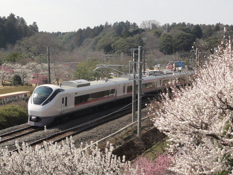 Viewing spot for plum blossoms and trains