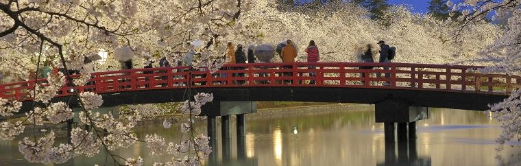 "It is expected that the cherry trees in the Tohoku region (""Northeast Region"") will be in full bloom around April 15th. The seven must-visit hamami (""cherry blossom viewing"") spots in the Tohoku region are listed here for your reference. We wish you a pleasant hanami tour ♡"