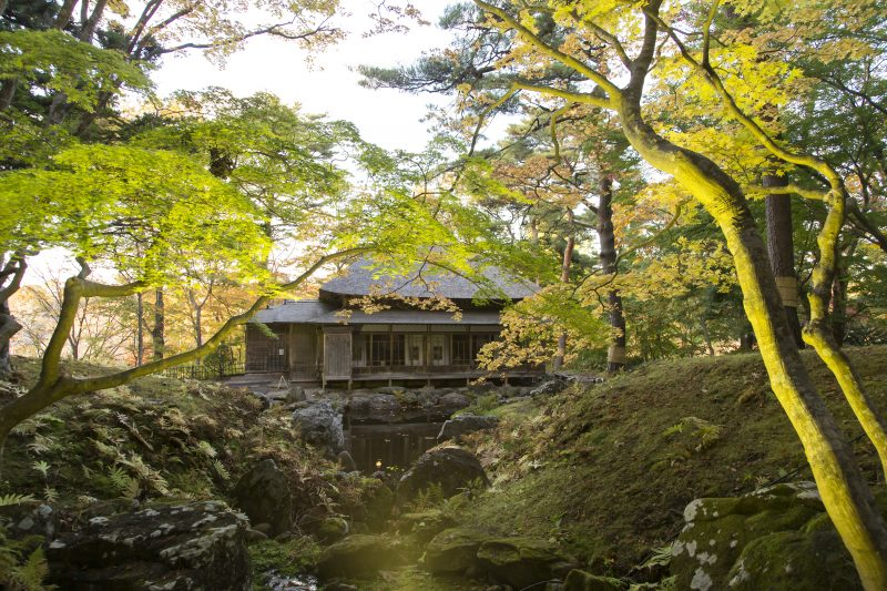 Picturesque Japanese-style garden