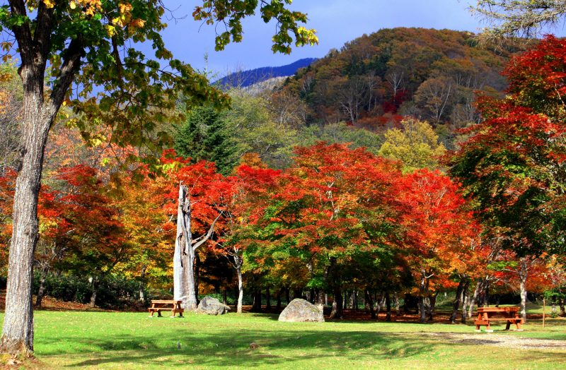 Fukuhara Mountain Villa, the beautiful fall colors of Tokachi in Hokkaido