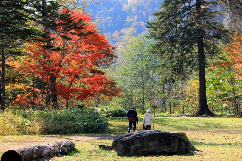 Strolling on the red foliage path in Fukuhara Mountain Villa