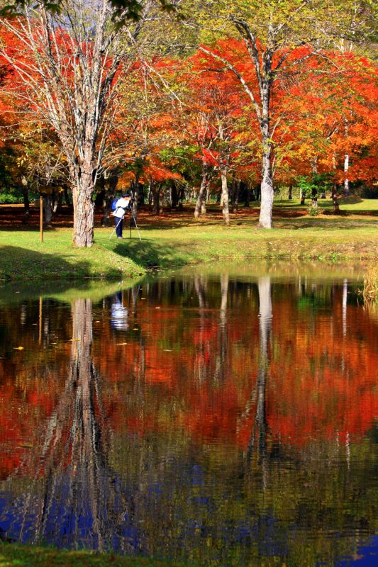 Fall foliage reflected in the pond