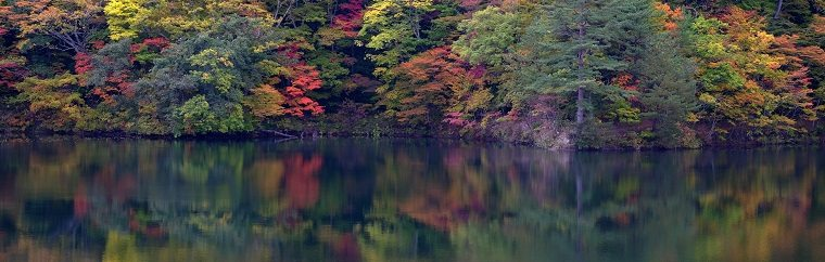 "Western Shirakami-Sanchi boasts a fall foliage viewing spot, Ketoba Lake, which is reputed to be a ""wonderland on earth"". As its name implies, the lake resembles a cockscomb (""keto"" in Japanese). With dense forests of beeches mirrored in the pellucid lake, the scenery is absolutely fantastic."