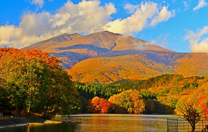 Choroko Lake + maple fall leaves + Mount Fubo