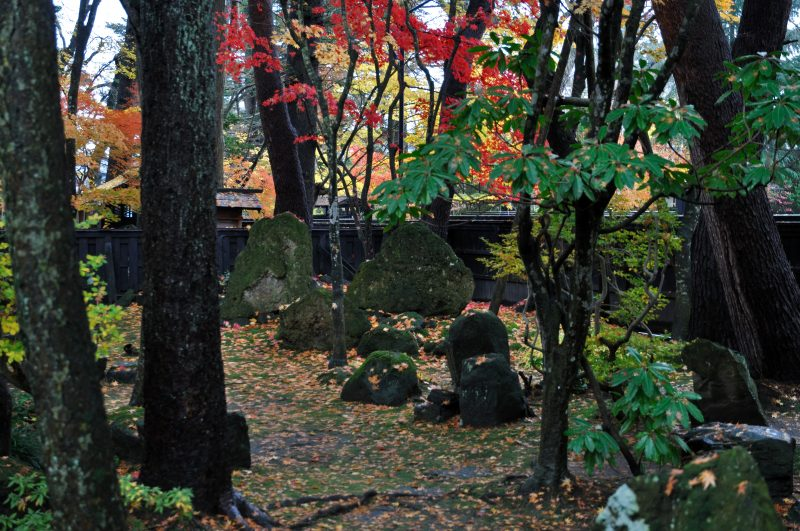 Secluded courtyard blanketed with fall leaves