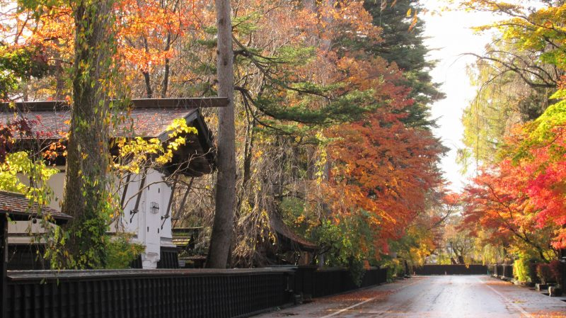Aoyagi House and fall foliage