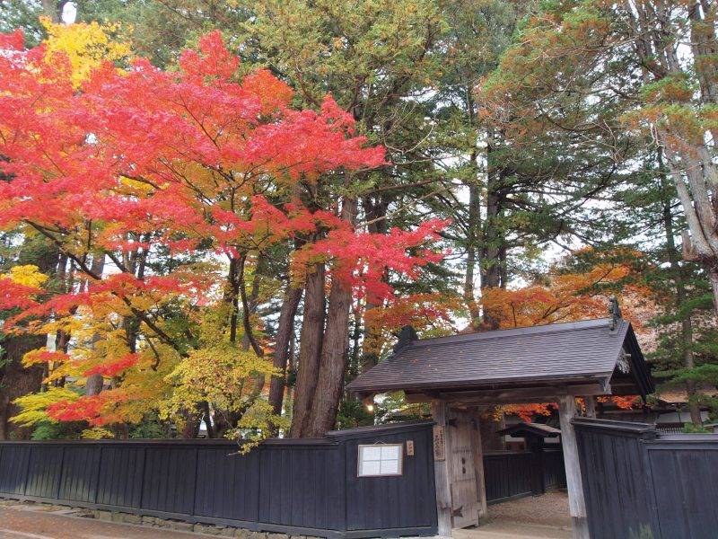 Ishiguro House and fall foliage