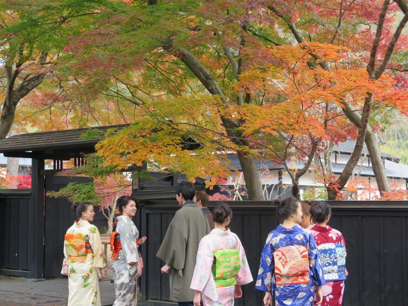 Tourists wearing kimonos