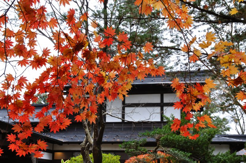 Nishinomiya House and fall foliage