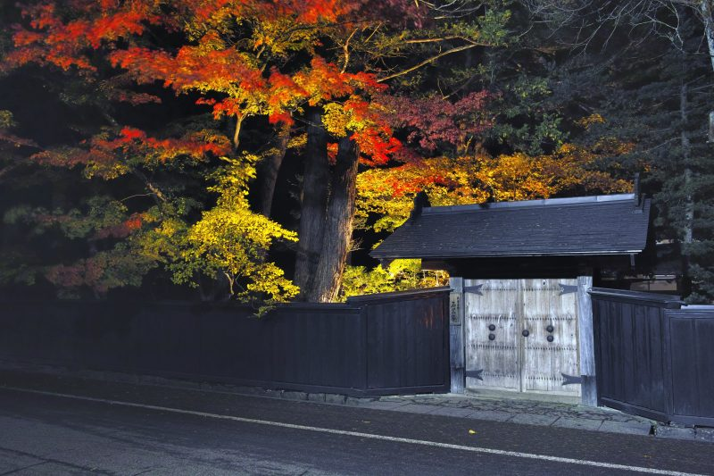 Illumination of the fall foliage in the Ishiguro House