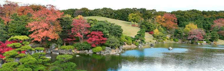 "【Osaka】 ""Expo'70 Commemorative Park"" Info on Fall Foliage & Fall Events"