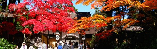 World Heritage Site – Mt. Koya (Part 1) – Autumn Leaves at Kongobu-ji and Danjogaran