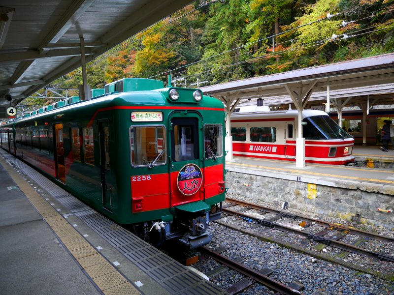 "Green Sightseeing Train ""Tenku"""