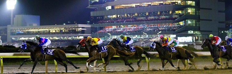 "Enjoy ""Ramen-fest 2017,"" a Winter Event at Ohi Racecourse!"