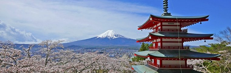 Mt. Fuji × Cherry Blossom Collaboration! A 2 Day 1 Night Model Route Using a Great Deal on a JR Pass!
