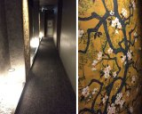 The patterns in the hallway and on the walls