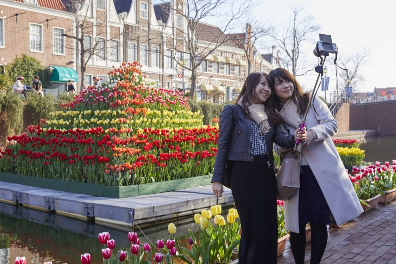 Take commemorative photos with tulips!