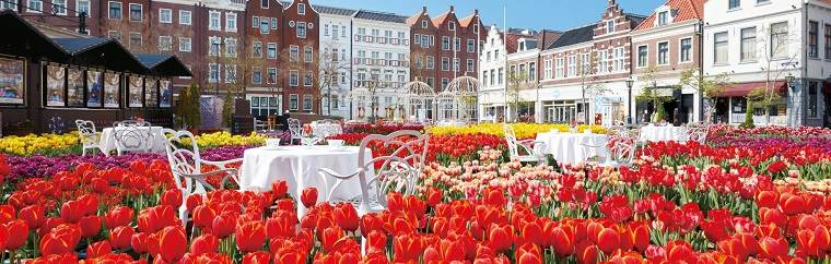 """Big Tulip Festival with 1 Million Tulips"" at Huis Ten Bosch in Nagasaki"
